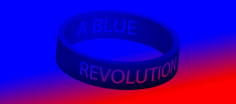A Blue Revolution Banner